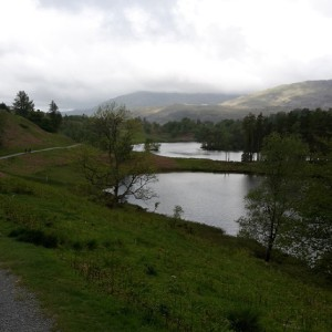 The stunning Tarn Hows. Probably the jewel in the crown of the Lakeland Trails marathon, (so they make you go round it twice!)