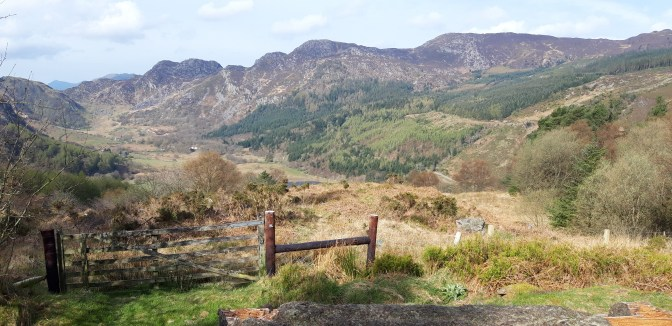 The view looking towards the Lynn Crafnant valley head from the mile climb out from our cottage.